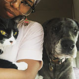 Arianna - Looking For Cat & Dog Sitter Jobs - Maybrook, Montgomery, Middletown