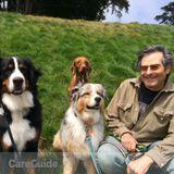 Dog Walker in San Francisco