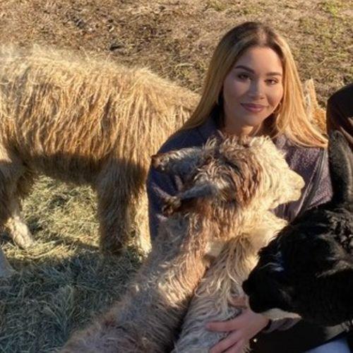 Pet Care Provider Elizabeth T's Profile Picture
