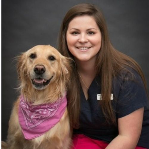 Pet Care Provider Megan Hutchinson's Profile Picture