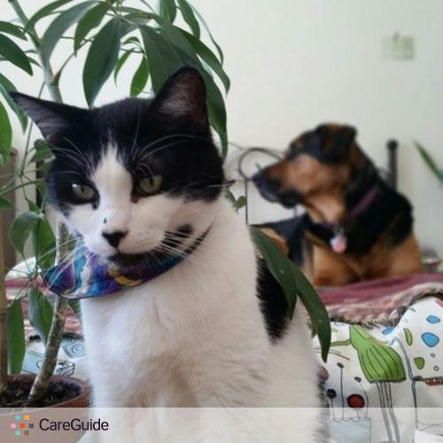 Pet Care Provider Tony M's Profile Picture