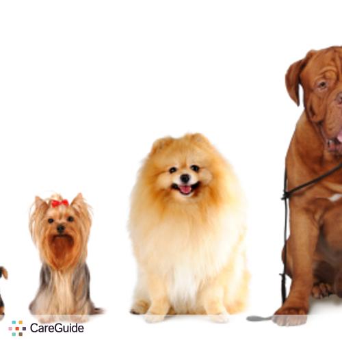 Pet Care Provider Francisco A's Profile Picture