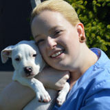 My name is Claire Moody and I have been pet sitting Rochester's furry friends for over 5 years.