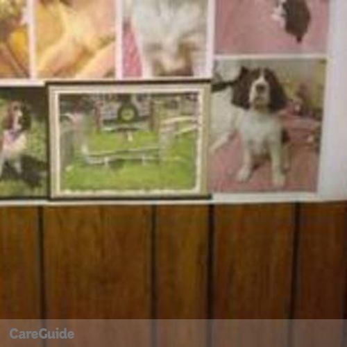 Pet Care Provider Alex Bair's Profile Picture