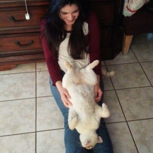 Pet Care Provider Xiomara G Gallery Image 2