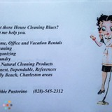 Housekeeper, House Sitter in Charleston