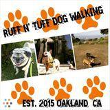 Dog Walker in Oakland