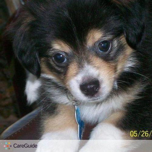 Pet Care Provider Nicole Butcher's Profile Picture