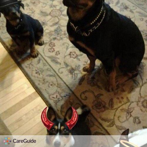 Pet Care Provider Laura Rossi's Profile Picture