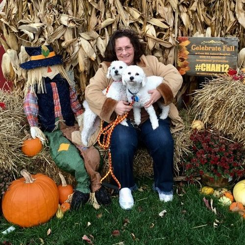 Pet Care Provider Kimberley T's Profile Picture