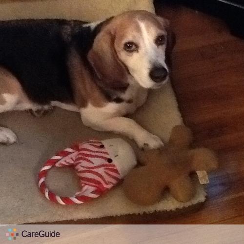 Pet Care Provider Mary Cappuccio's Profile Picture
