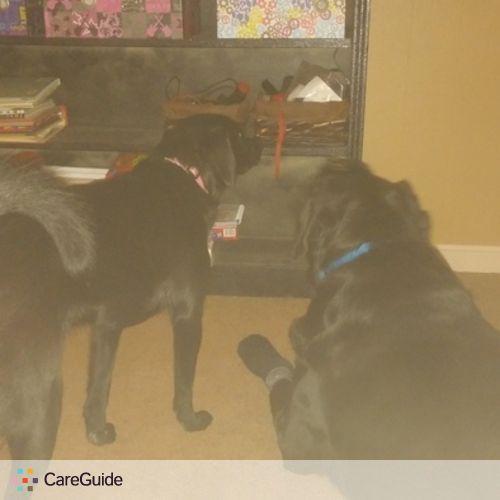 Pet Care Provider Danielle Everts's Profile Picture