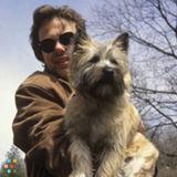 Dog Walker, Pet Sitter in Vancouver