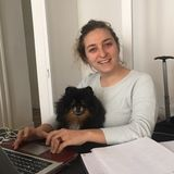 Trustworthy Pet Feeding and house sitting