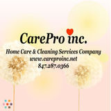 House Cleaning Company, House Sitter in Schaumburg
