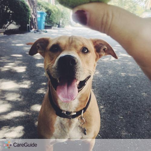 Pet Care Job Kai N's Profile Picture