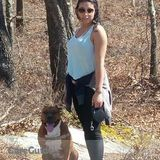 Dog Walker, Pet Sitter in Abington
