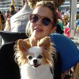 Dog Walker, Pet Sitter in West Hollywood