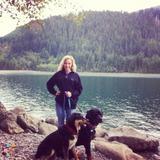 Dog Walker, Pet Sitter, Kennel in Rogers
