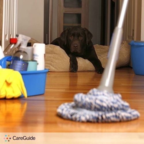 Housekeeper Provider Bamboo Cleaning Services's Profile Picture