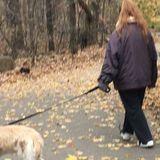 Seeking NYC Pet Sitting Jobs!