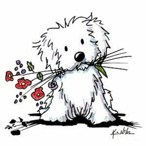 Pet Care Provider Vickie C's Profile Picture