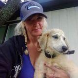 Interested In a Pet Supervisor Opportunity in Alvarado