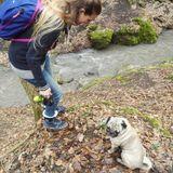 Trusty And Nice Animal Sitter in Brampton, Ontario
