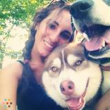 Dog Walker, Pet Sitter in Sharon