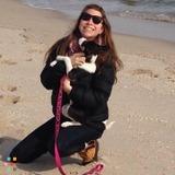 Dog Walker, Pet Sitter in Philadelphia