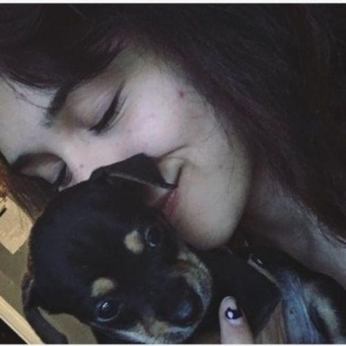 Pet Care Provider Alyssa R Gallery Image 3