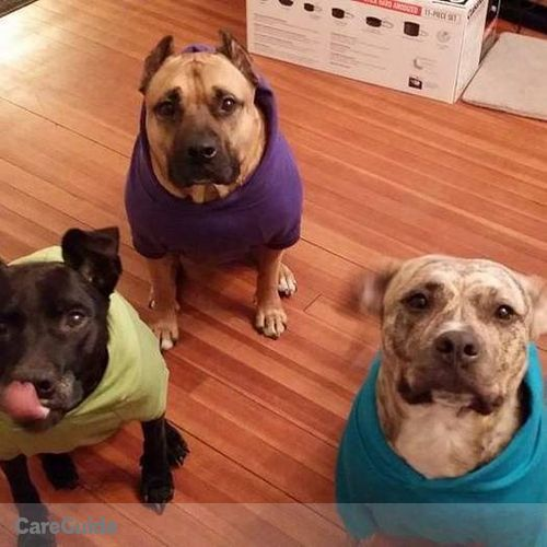 Pet Care Provider Jeannie Lisak's Profile Picture