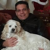 Medford Dog Sitter Interested In Job Opportunities in New York