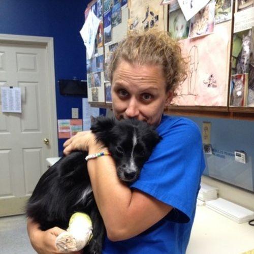 Pet Care Provider Jane Sowden's Profile Picture