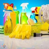 House Cleaning Company, House Sitter in Lincoln Park