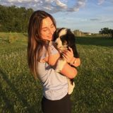 Saskatoon Pet Sitter Seeking Job Opportunities in Saskatchewan