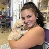 Need A Pet Sitter? You Found The Best!