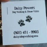 Daisys dog walking and home visits for your furr babies while your at work or away from home!