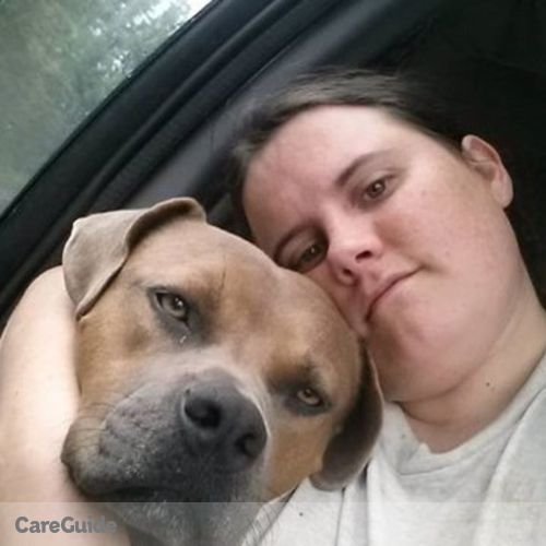Pet Care Provider Wendi Simmons's Profile Picture