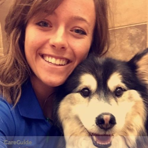 Pet Care Provider Allisha Policky's Profile Picture