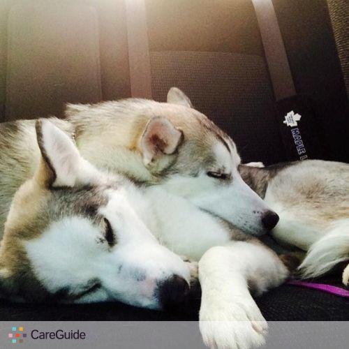 Pet Care Provider Sammie Gomes's Profile Picture