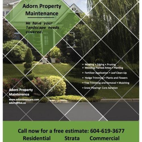 Landscaper Provider Adorn Property M's Profile Picture
