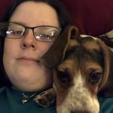 Matthews, North Carolina Pet Sitter