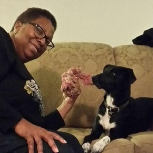 Pet Care Provider Mattie Dawan Gallery Image 2