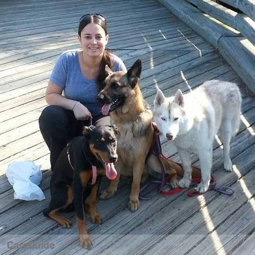 Pet Care Provider Christina Walden's Profile Picture