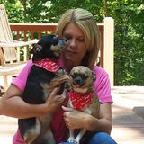 Reliable in Home Pet Sitter