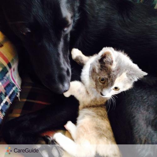 Pet Care Provider Katarina Gatica's Profile Picture