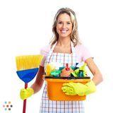 Housekeeper, House Sitter in Medford