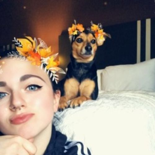 Pet Care Provider Cierra J's Profile Picture