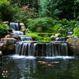 COMPLETE LANDSCAPE SERVICES landscape construction, maintenance, design, irrigation, lighting, etc.